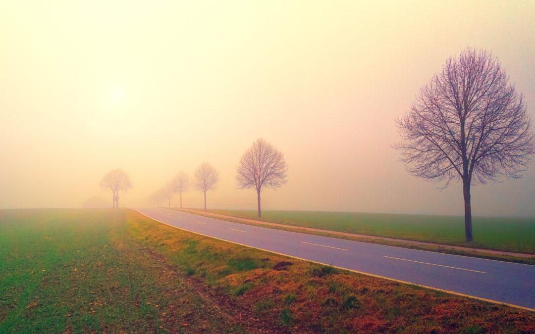 Dimma och enslig väg under hösten